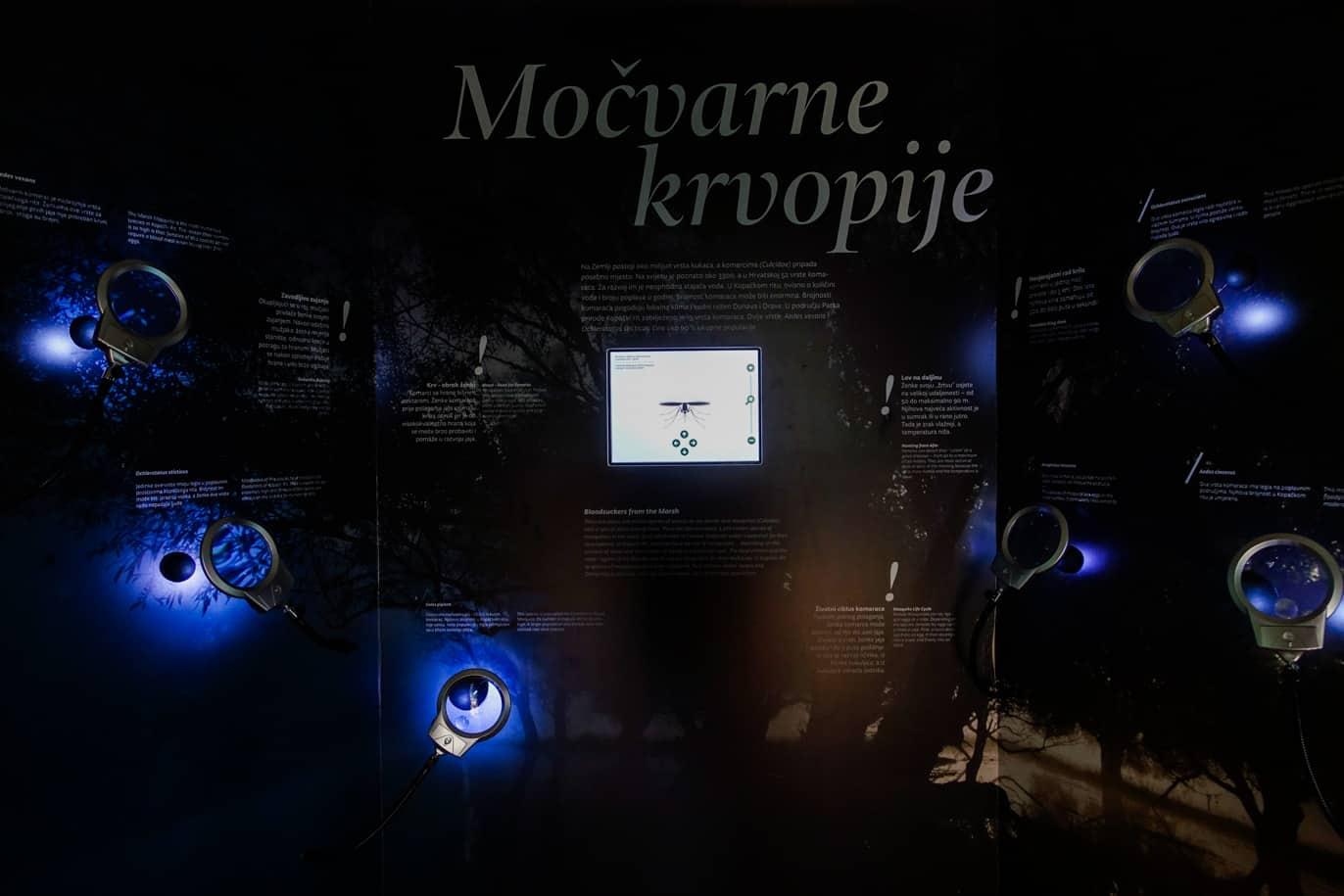 kopacki-izlozba-004-copy